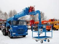 thumb_arenda-avtokrana-25-tonn-32-metra-s-lyulkoy